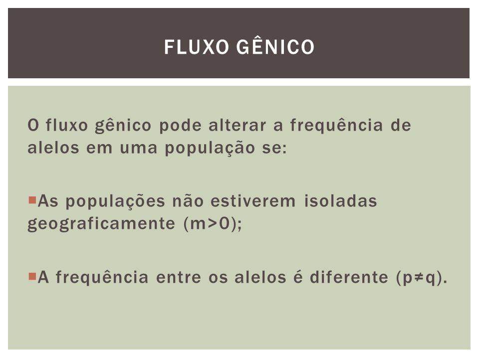FLUXO GÊNICO O fluxo gênico pode alterar a frequência de alelos em uma população se: As populações não estiverem isoladas geograficamente (m>0);