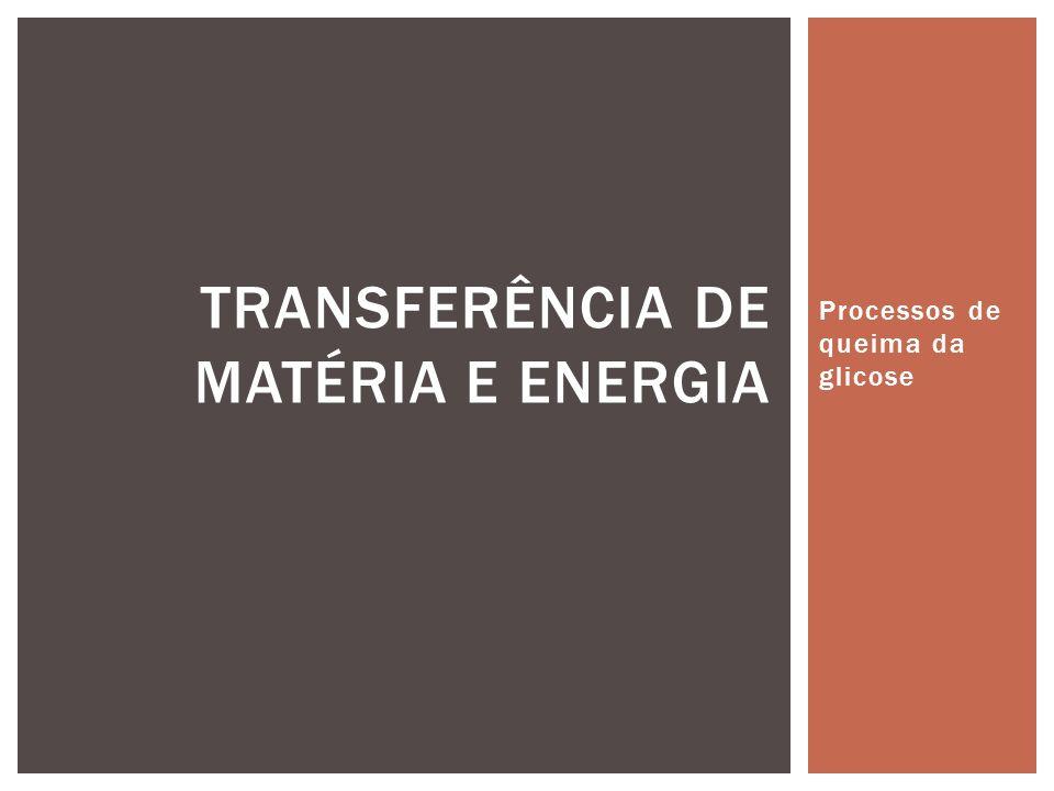 TRANSFERÊNCIA DE MATÉRIA E ENERGIA
