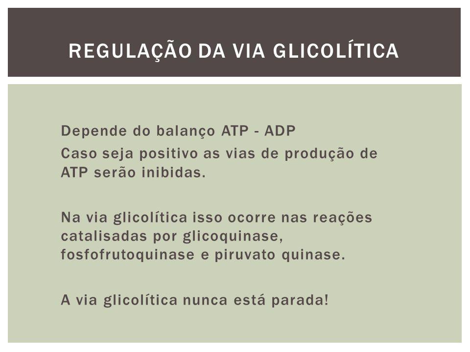 REGULAÇÃO DA VIA GLICOLÍTICA