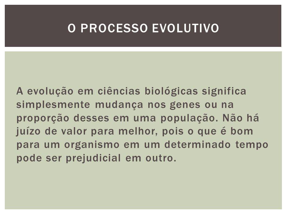 O processo evolutivo