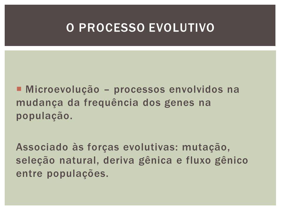 O processo evolutivo Microevolução – processos envolvidos na mudança da frequência dos genes na população.