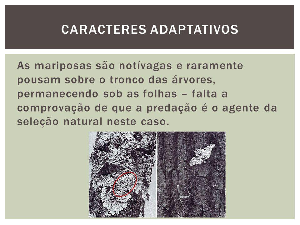 Caracteres adaptativos