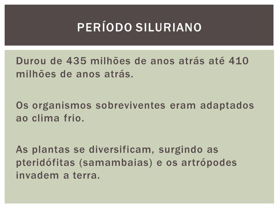 Período siluriano