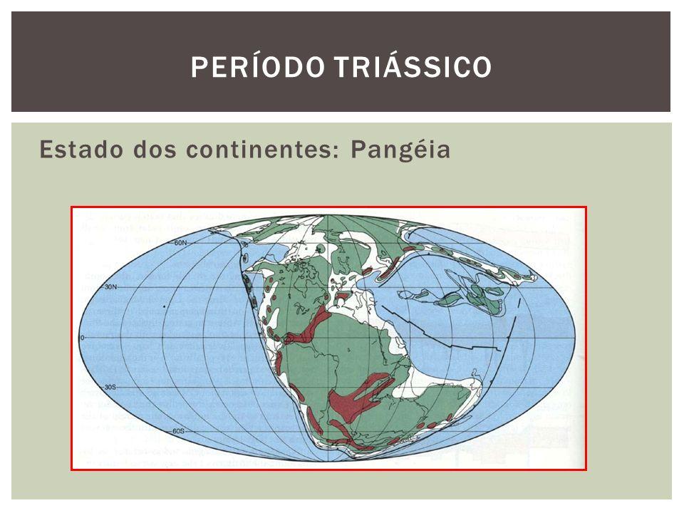 Período triássico Estado dos continentes: Pangéia