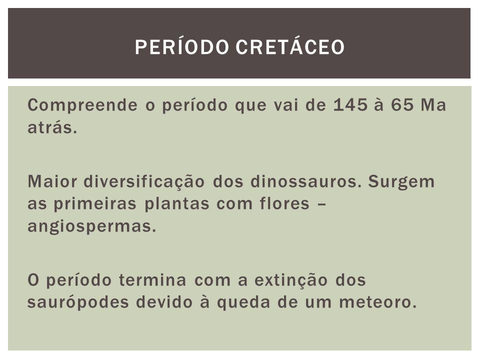 Período cretáceo