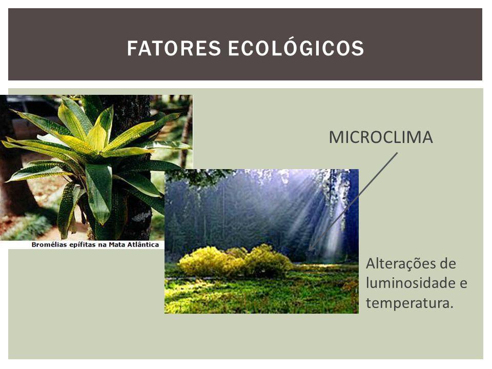 Fatores ecológicos MICROCLIMA