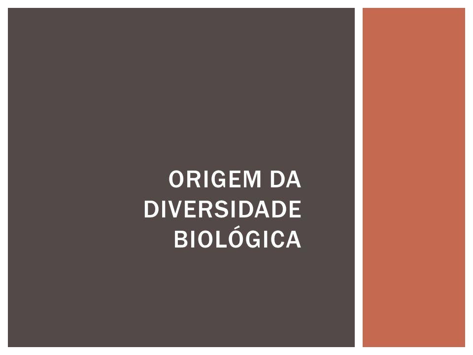 Origem da diversidade biológica