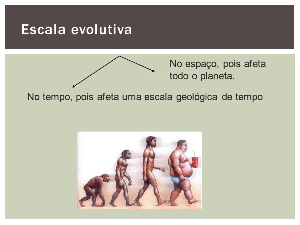 Escala evolutiva No espaço, pois afeta todo o planeta.