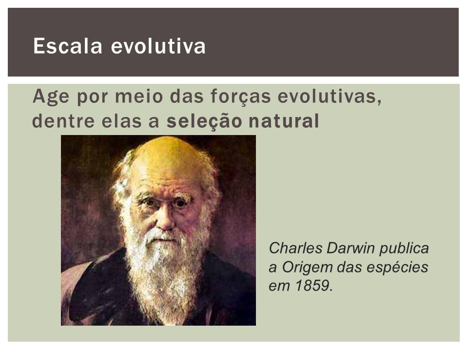 Escala evolutiva O que é a evolução Age por meio das forças evolutivas, dentre elas a seleção natural.