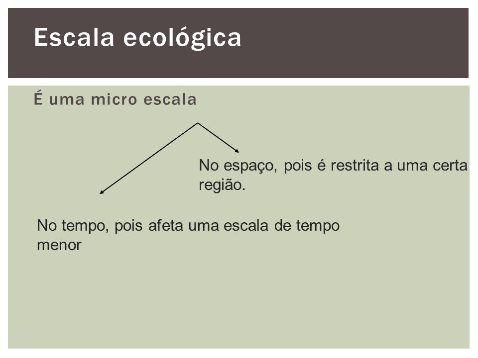 Escala ecológica É uma micro escala