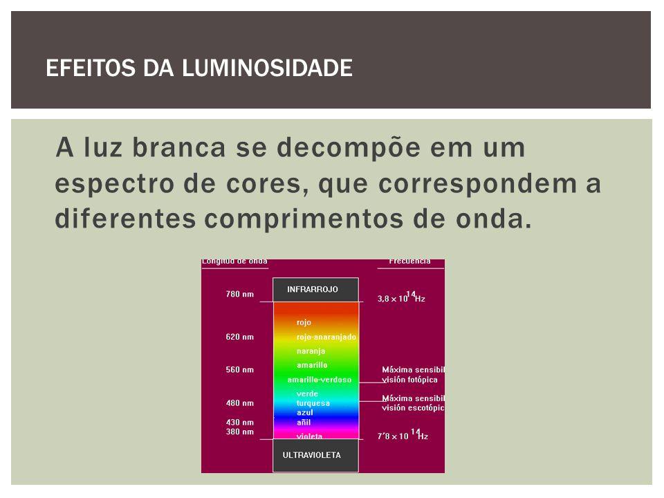 EFEITOS DA LUMINOSIDADE