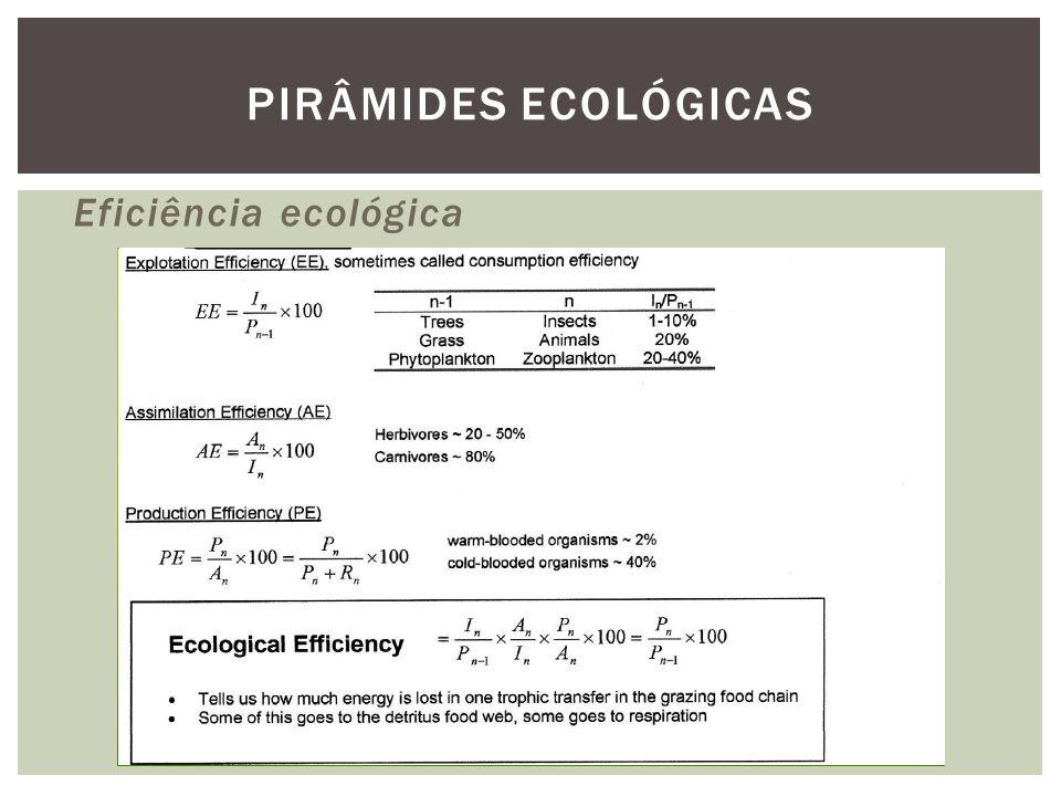 PIRÂMIDES ECOLÓGICAS Eficiência ecológica