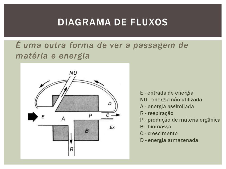 Diagrama de fluxos É uma outra forma de ver a passagem de matéria e energia. E - entrada de energia.