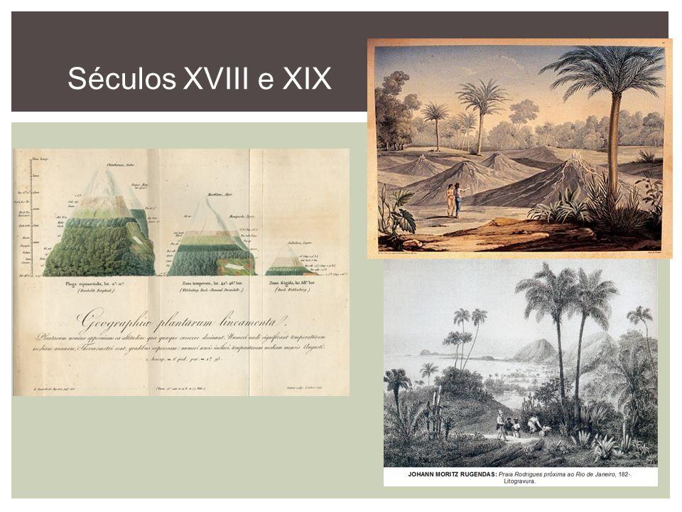 Séculos XVIII e XIX
