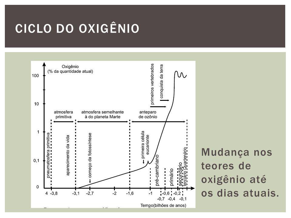 CICLO DO OXIGÊNIO Mudança nos teores de oxigênio até os dias atuais.