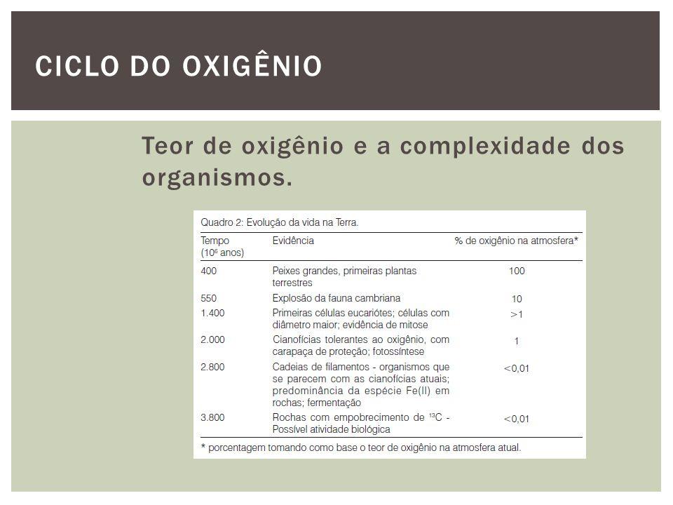CICLO DO OXIGÊNIO Teor de oxigênio e a complexidade dos organismos.