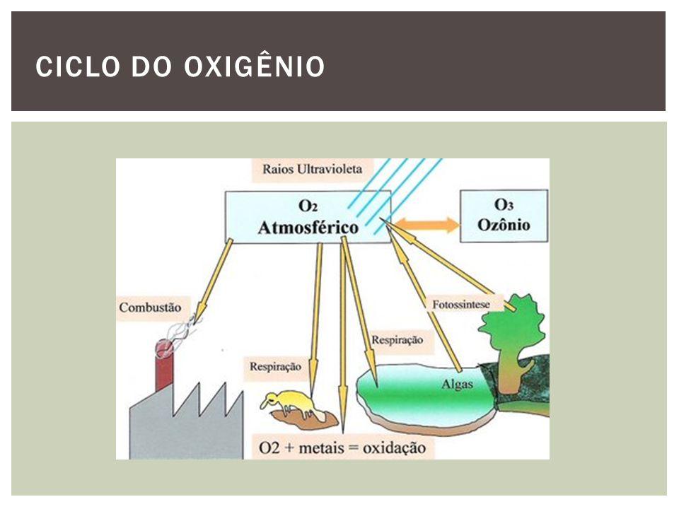 CICLO DO OXIGÊNIO