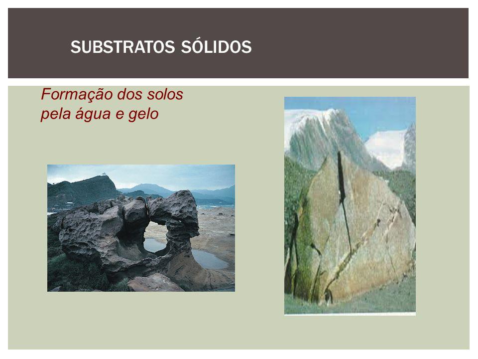SUBSTRATOS SÓLIDOS Formação dos solos pela água e gelo