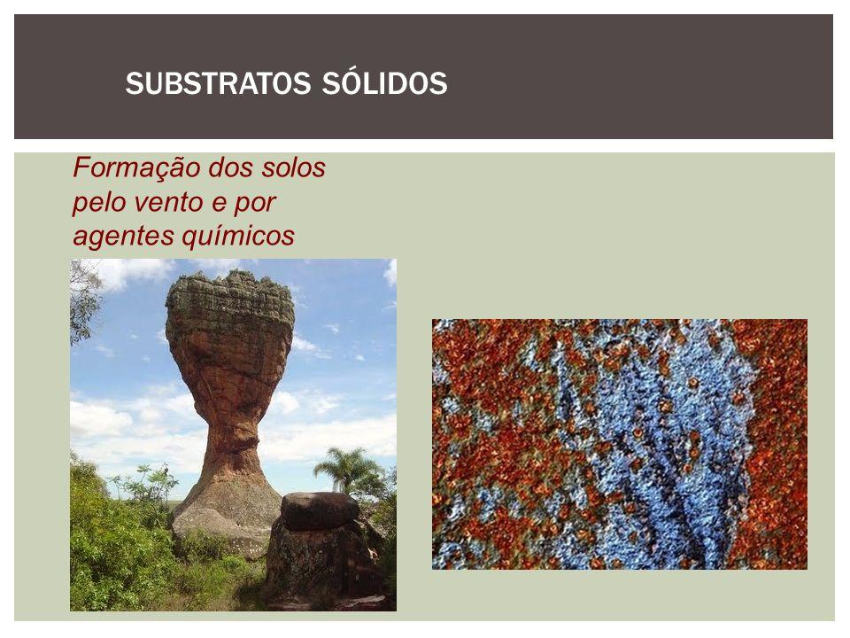 SUBSTRATOS SÓLIDOS Formação dos solos pelo vento e por agentes químicos