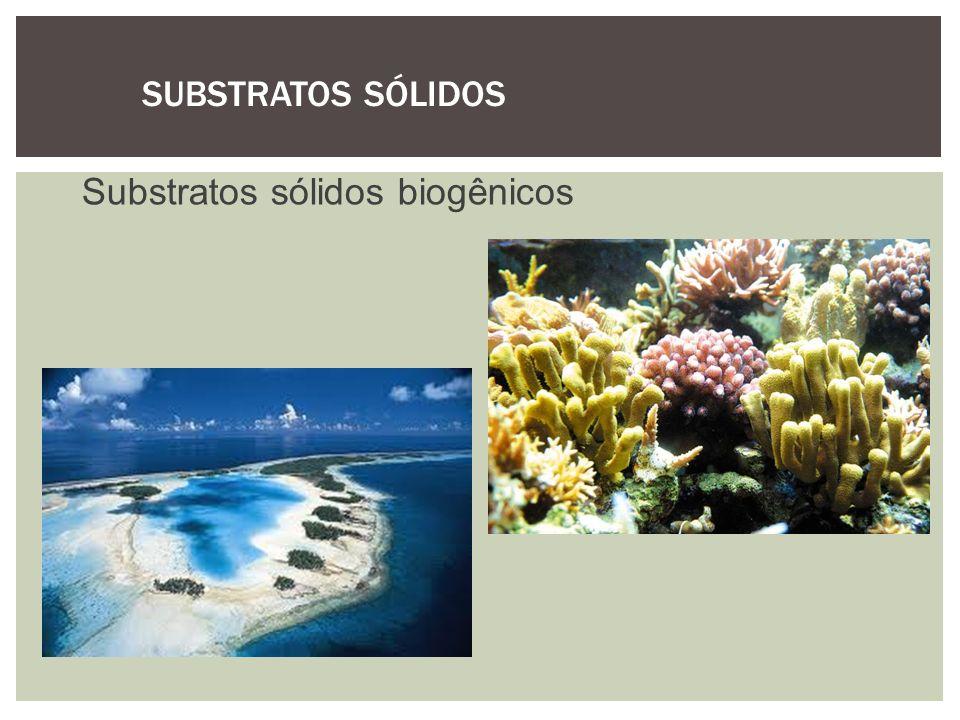 SUBSTRATOS SÓLIDOS Substratos sólidos biogênicos