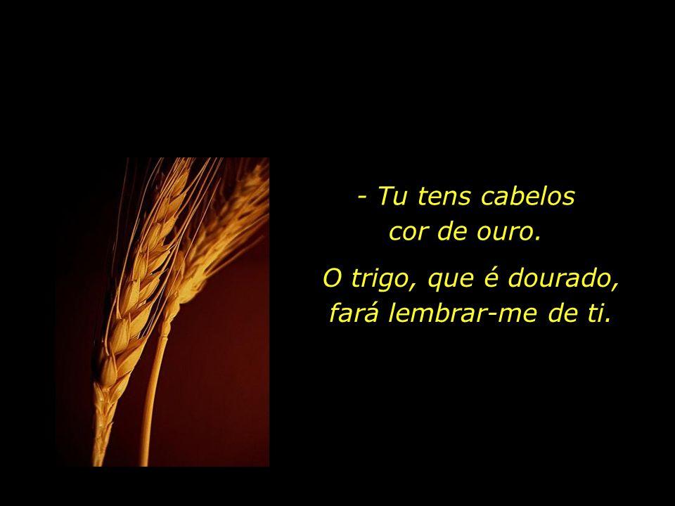 O trigo, que é dourado, fará lembrar-me de ti.