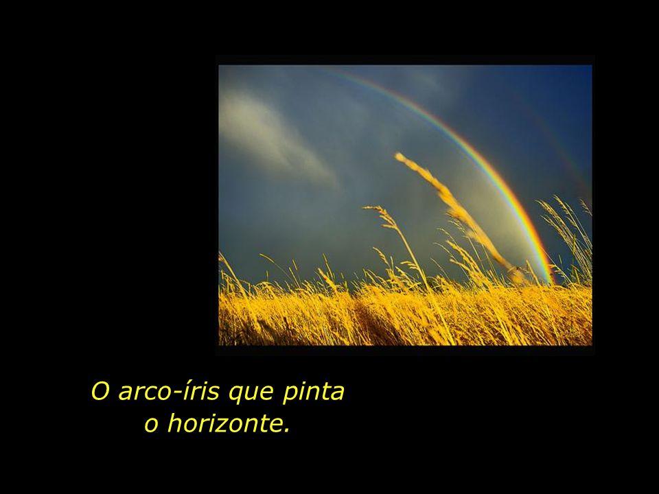 O arco-íris que pinta o horizonte.