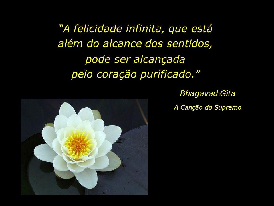 A felicidade infinita, que está além do alcance dos sentidos,