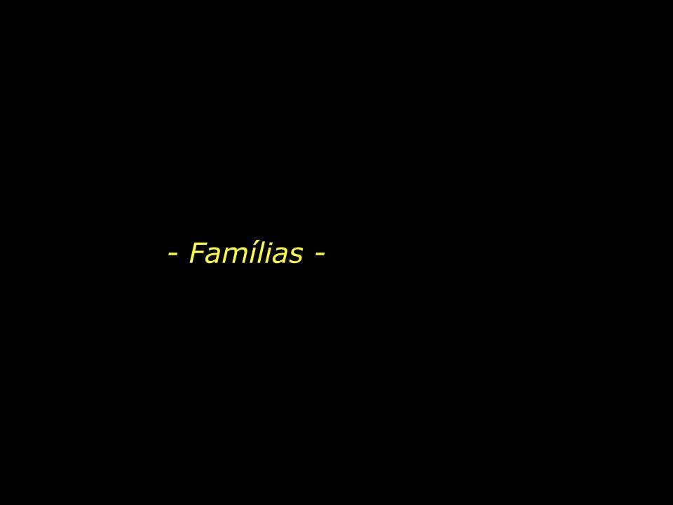 - Famílias - 1