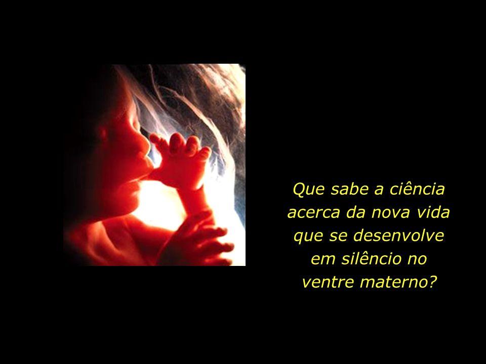 Que sabe a ciência acerca da nova vida que se desenvolve em silêncio no ventre materno