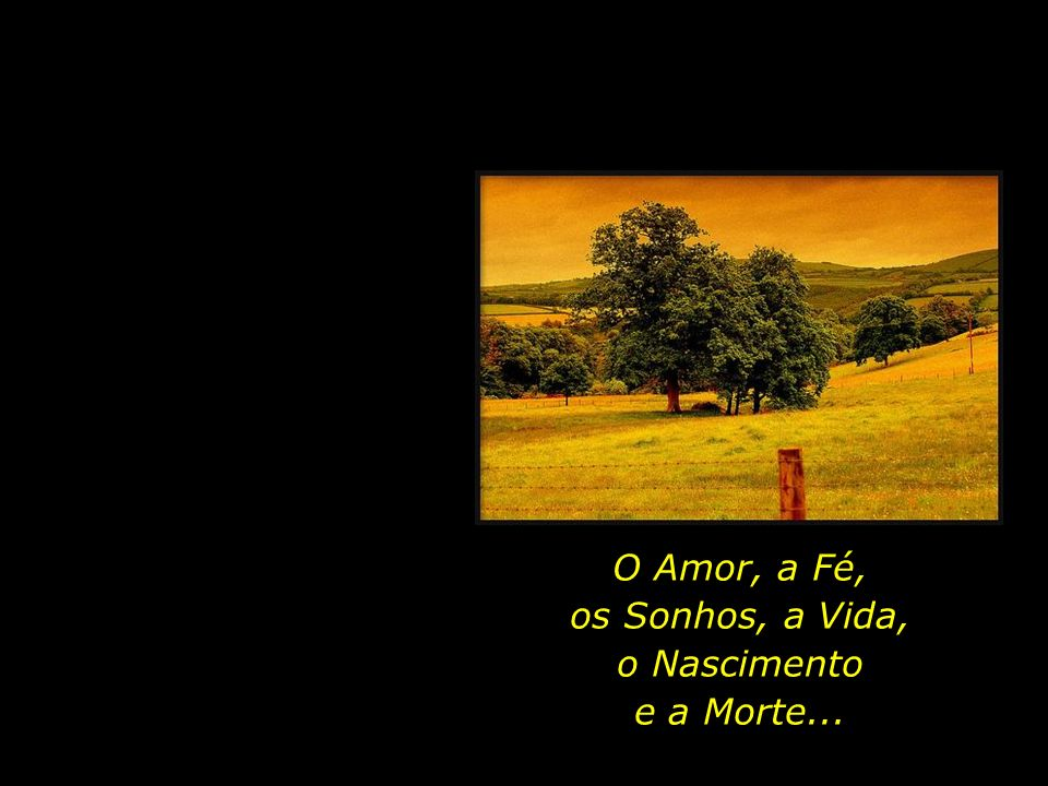 O Amor, a Fé, os Sonhos, a Vida, o Nascimento e a Morte...
