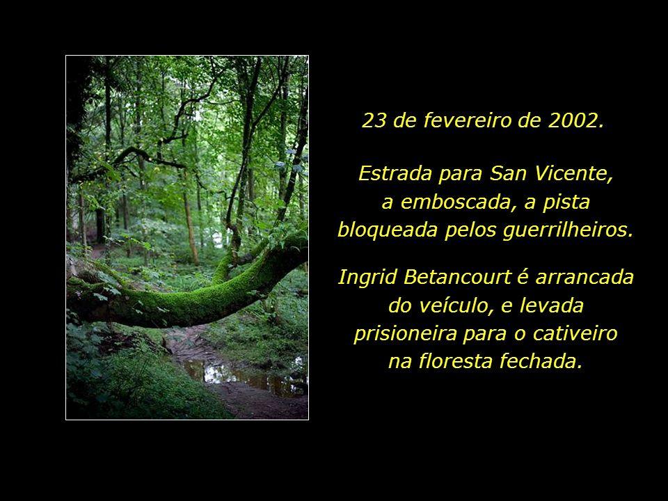 23 de fevereiro de 2002. Estrada para San Vicente, a emboscada, a pista bloqueada pelos guerrilheiros.