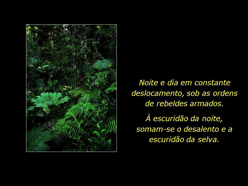 À escuridão da noite, somam-se o desalento e a escuridão da selva.