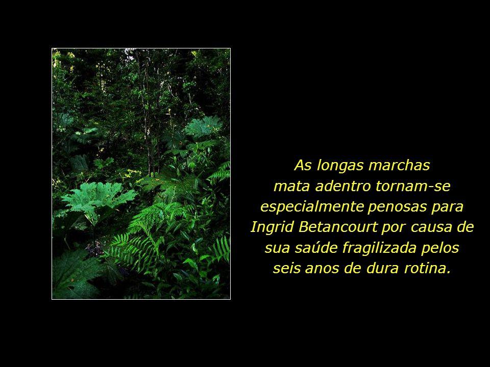 As longas marchas mata adentro tornam-se especialmente penosas para Ingrid Betancourt por causa de sua saúde fragilizada pelos seis anos de dura rotina.