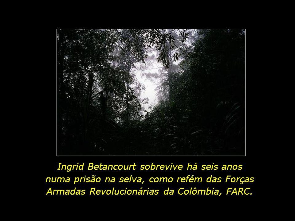 Ingrid Betancourt sobrevive há seis anos numa prisão na selva, como refém das Forças Armadas Revolucionárias da Colômbia, FARC.