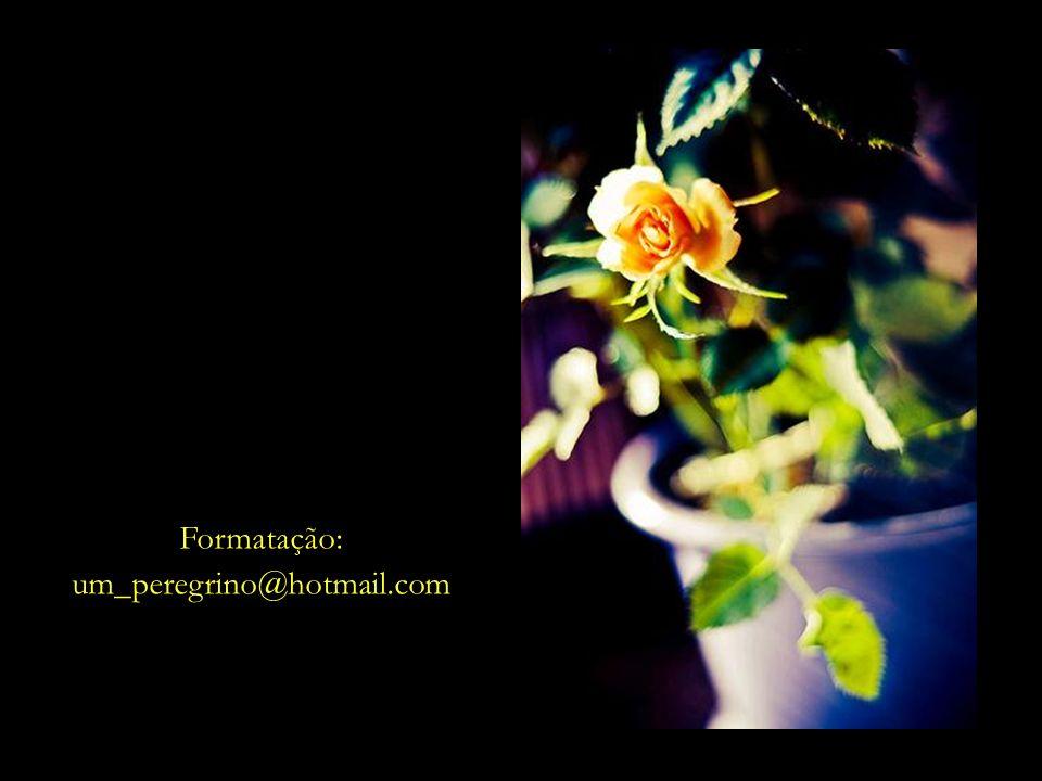 Formatação: um_peregrino@hotmail.com