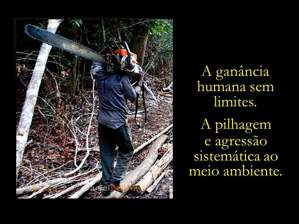 A ganância humana sem limites.