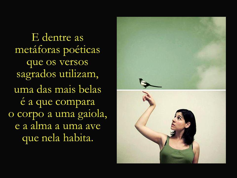 E dentre asmetáforas poéticas. que os versos. sagrados utilizam, uma das mais belas. é a que compara.