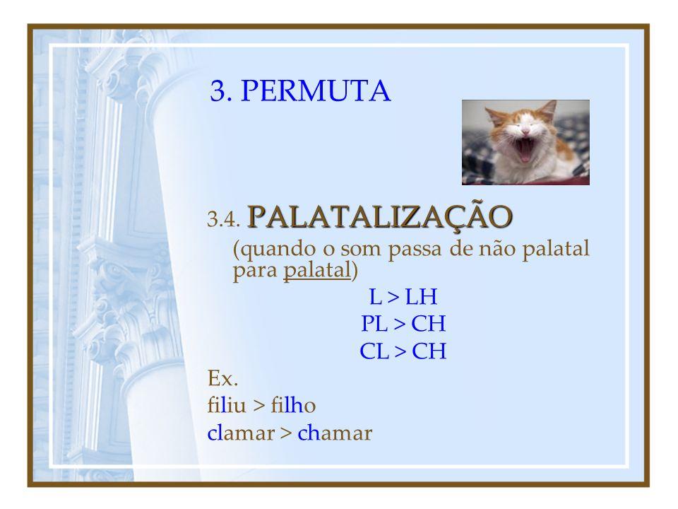 3. PERMUTA 3.4. PALATALIZAÇÃO