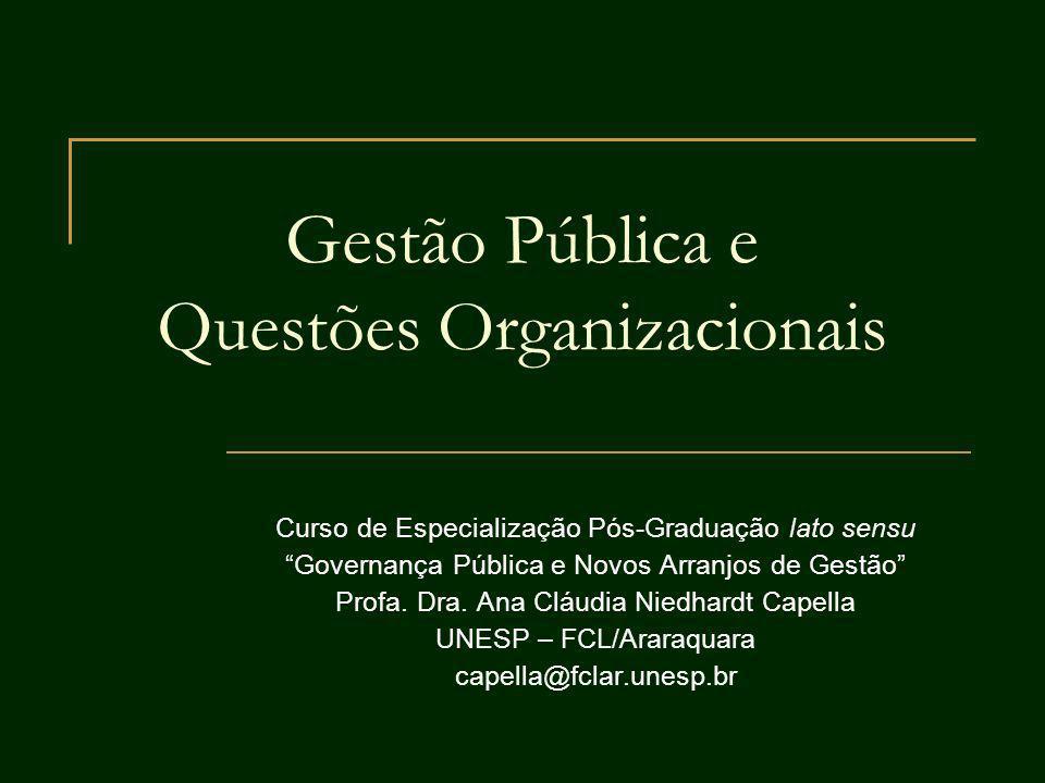 Gestão Pública e Questões Organizacionais