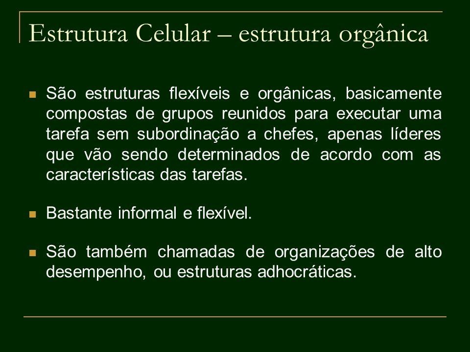 Estrutura Celular – estrutura orgânica