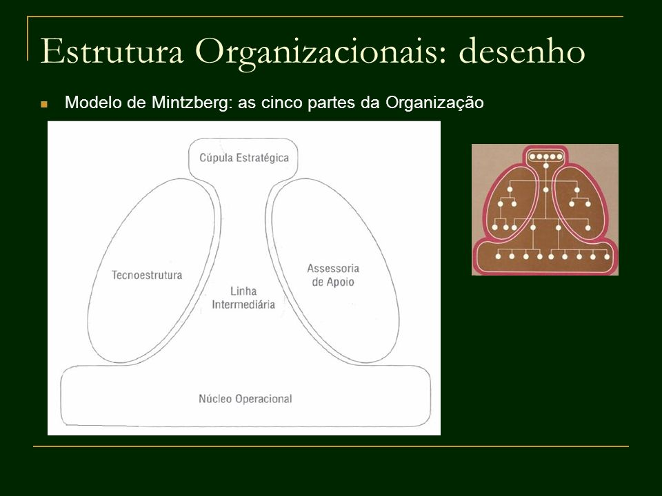 Estrutura Organizacionais: desenho