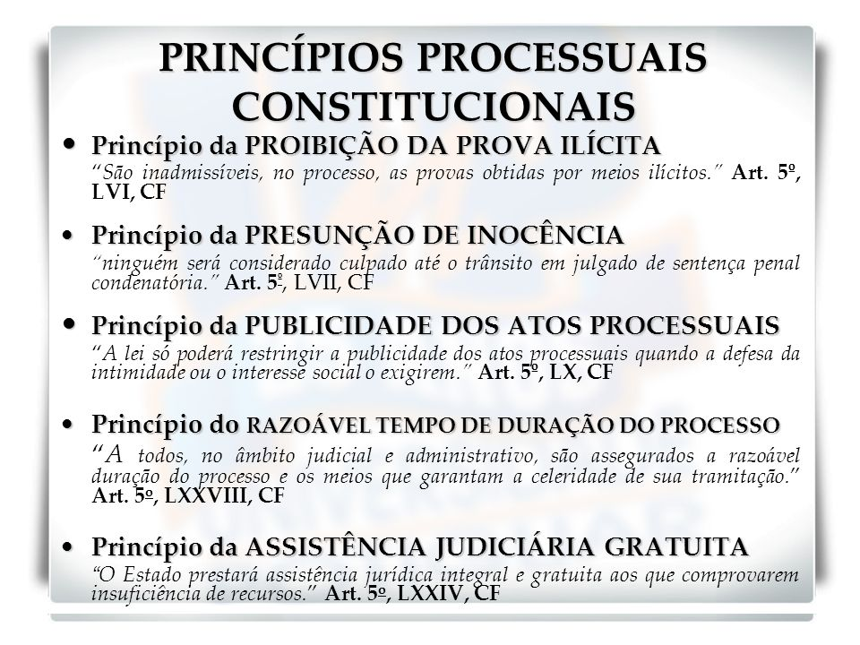PRINCÍPIOS PROCESSUAIS CONSTITUCIONAIS