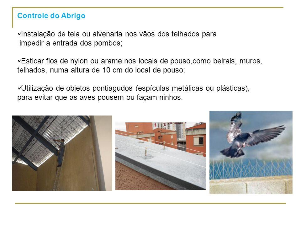Controle do Abrigo Instalação de tela ou alvenaria nos vãos dos telhados para. impedir a entrada dos pombos;