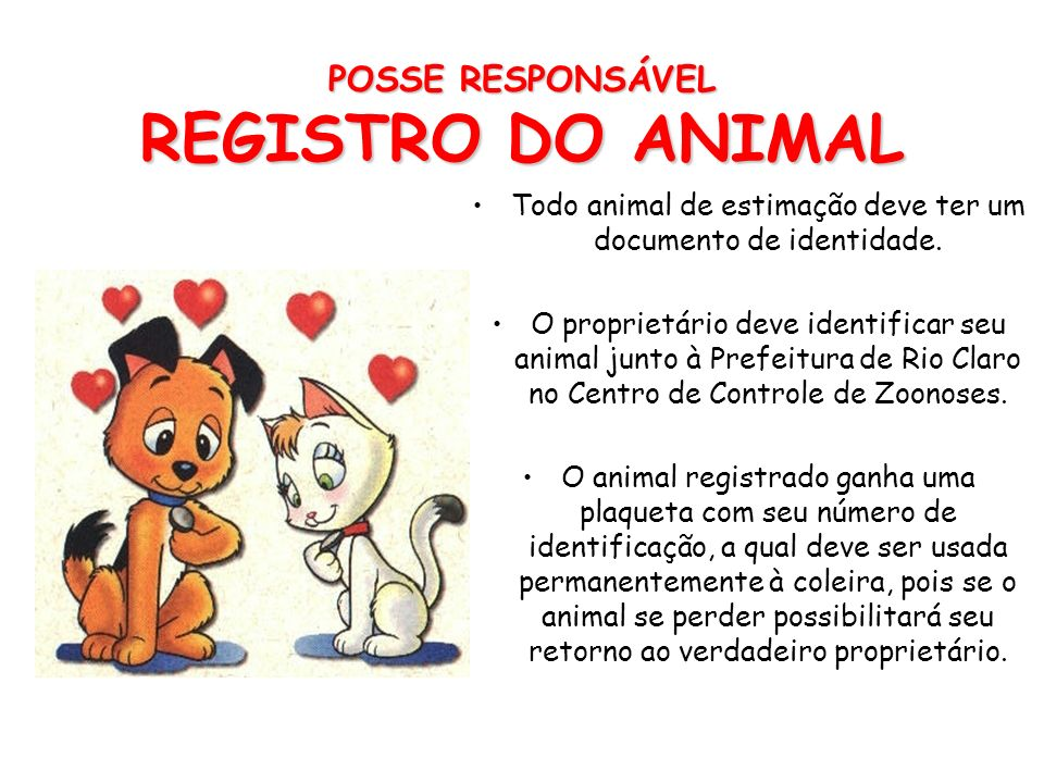 POSSE RESPONSÁVEL REGISTRO DO ANIMAL
