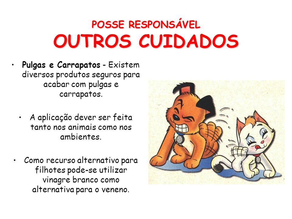 POSSE RESPONSÁVEL OUTROS CUIDADOS