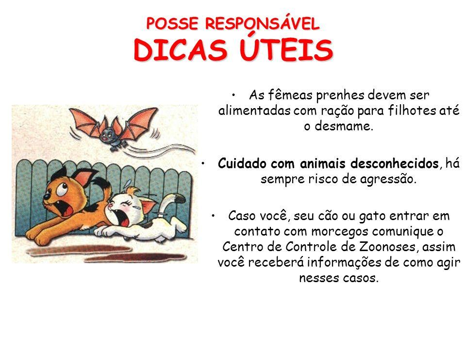 POSSE RESPONSÁVEL DICAS ÚTEIS