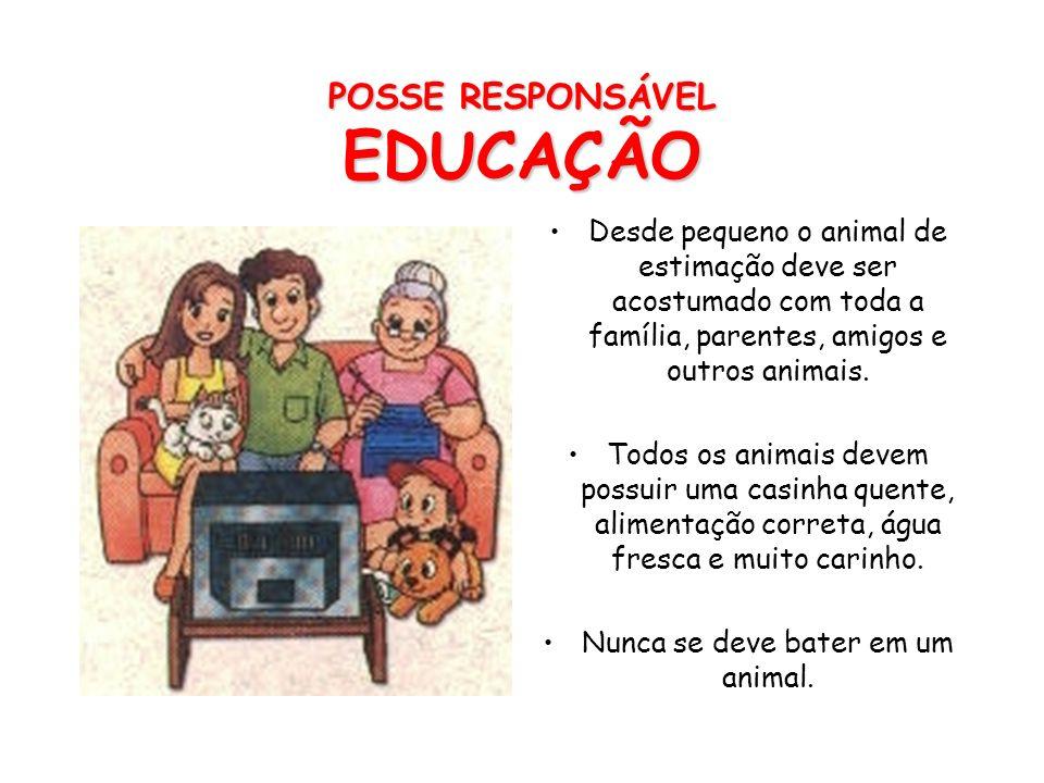 POSSE RESPONSÁVEL EDUCAÇÃO
