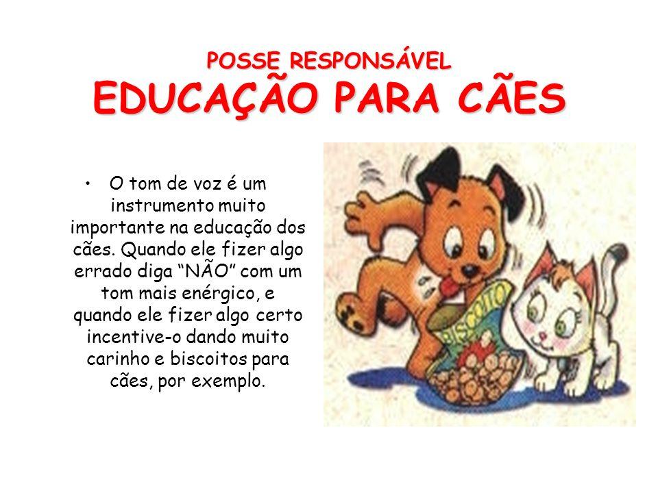 POSSE RESPONSÁVEL EDUCAÇÃO PARA CÃES