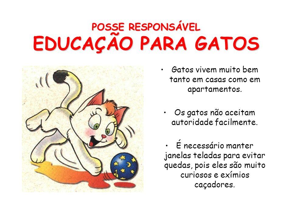 POSSE RESPONSÁVEL EDUCAÇÃO PARA GATOS