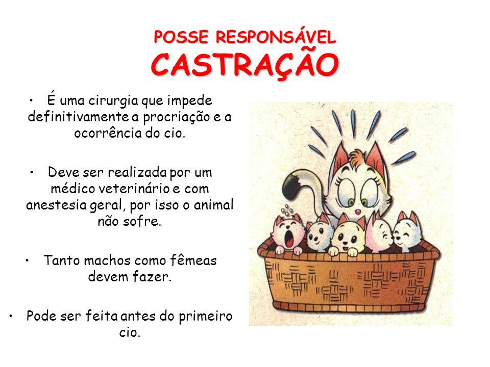 POSSE RESPONSÁVEL CASTRAÇÃO